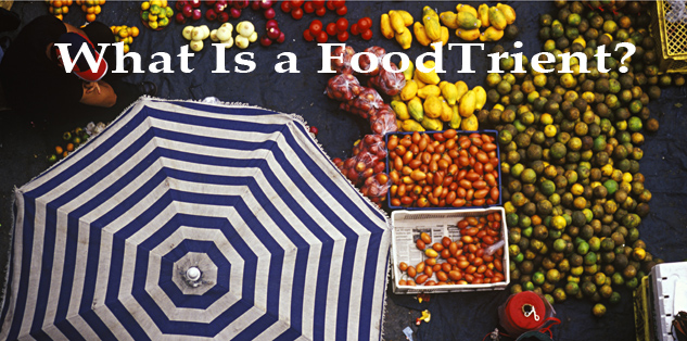 What is a FoodTrient?