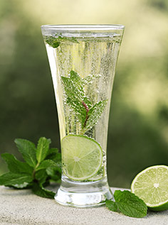Agave Mint drink FoodTrienst x