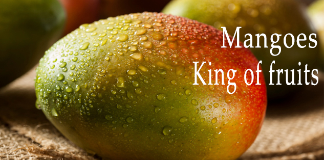 "Mangoes ""King of Fruits"""